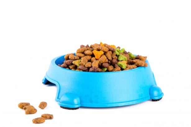 pet food manufacturing process application photo